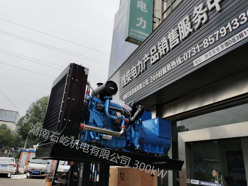 永州渣土 300kW柴油发电机组