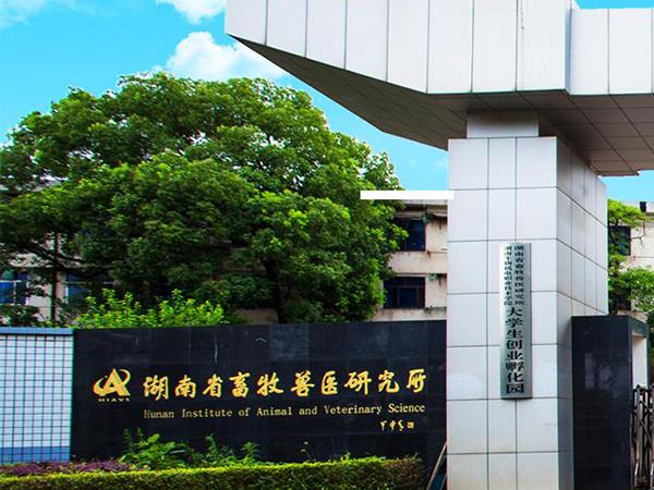 湖南省畜牧兽医研究所采购我司潍柴原装发电机组